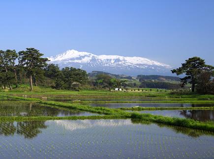 写真:にかほ市から望む鳥海山